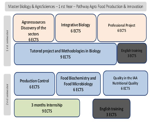 Agro food production & innovation